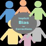 IB Corrections logo